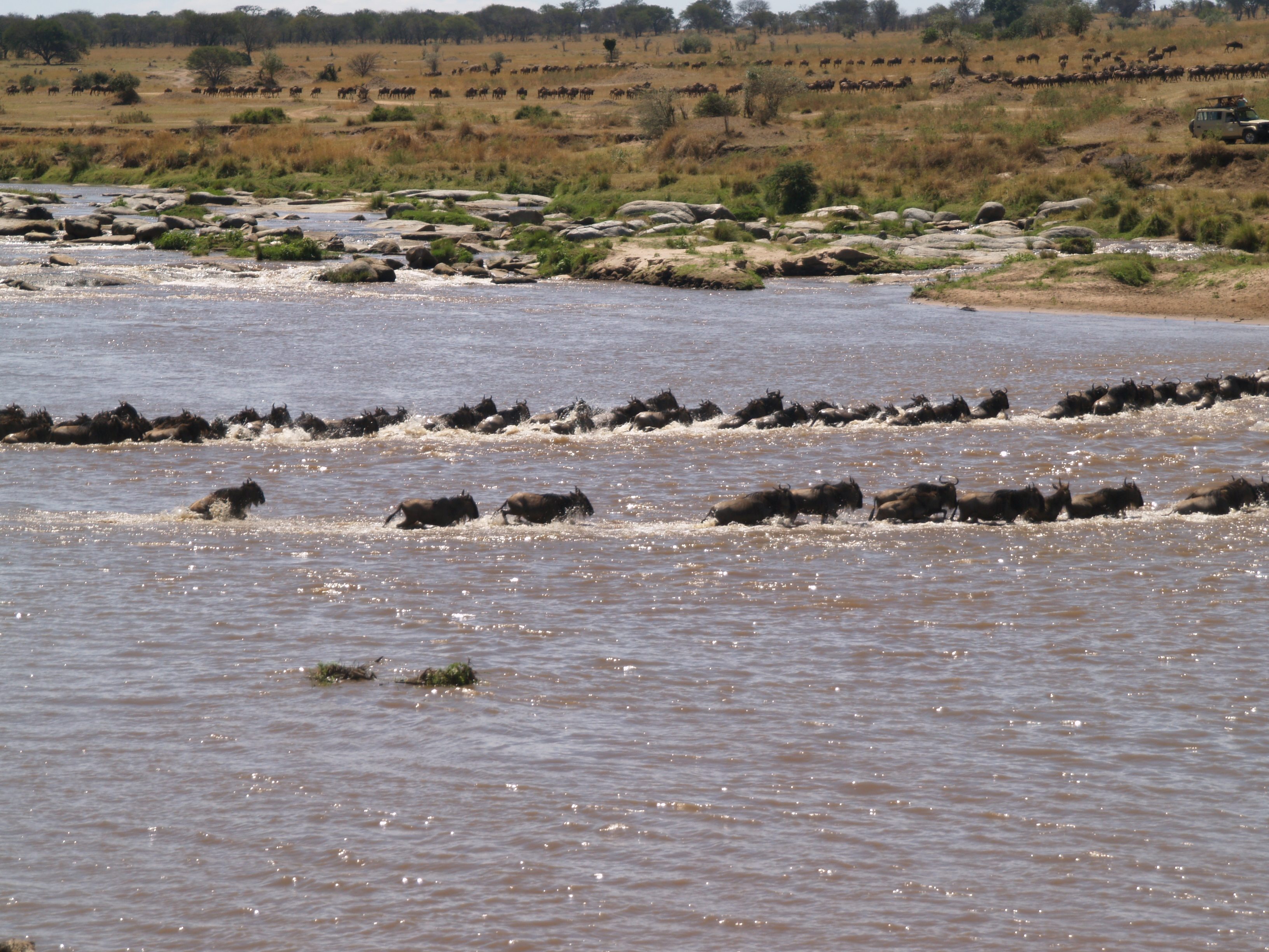 pictures from some of the other crossings
